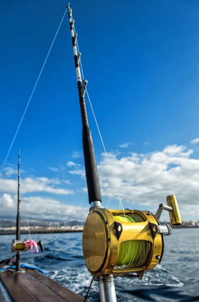 Big game fishing rods stock photo