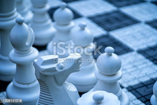istock Big, garden chess set on the lawn 1209141018