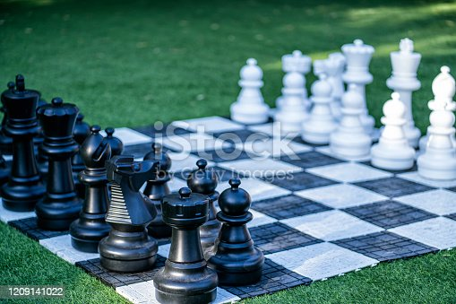 istock Big, garden chess set on the lawn 1209141022