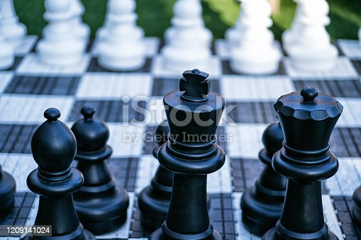 istock Big, garden chess set on the lawn 1209141024