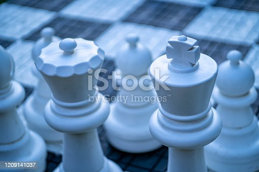 istock Big, garden chess set on the lawn 1209141037