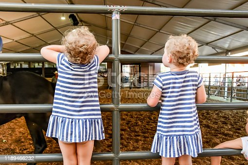 Texas State Fair - A six year old big sister and her identical twin toddler sisters are enjoying a day at the State Fair of Texas. Here the identical twin toddlers have climbed up on the fence to get a better view of horses performing in a horse ring.