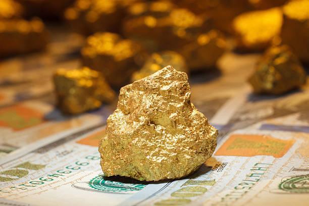 big gold nugget and dollar bills stock photo