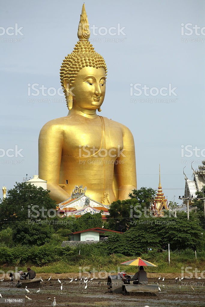 big golden buddha statue thailand stock photo more pictures of agriculture istock. Black Bedroom Furniture Sets. Home Design Ideas