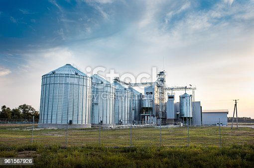Big group of grain dryers complex for drying wheat. Modern grain silo. Agriculture concept