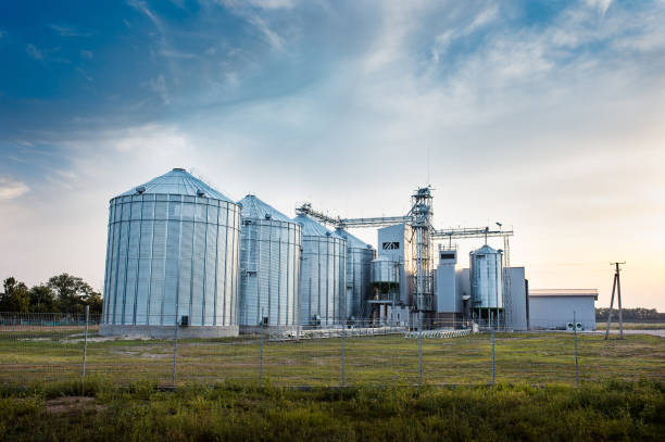 Big group of grain dryers complex for drying wheat. Modern grain silo. Agriculture concept stock photo