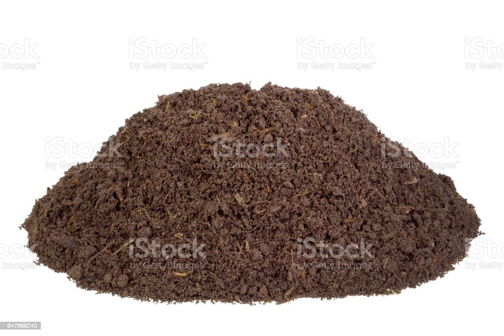Big heap real soils of compost. There are live insects and the rotted  parts of plants stock photo