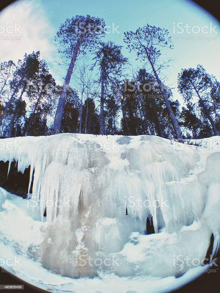 Big icicles in winter forest stock photo