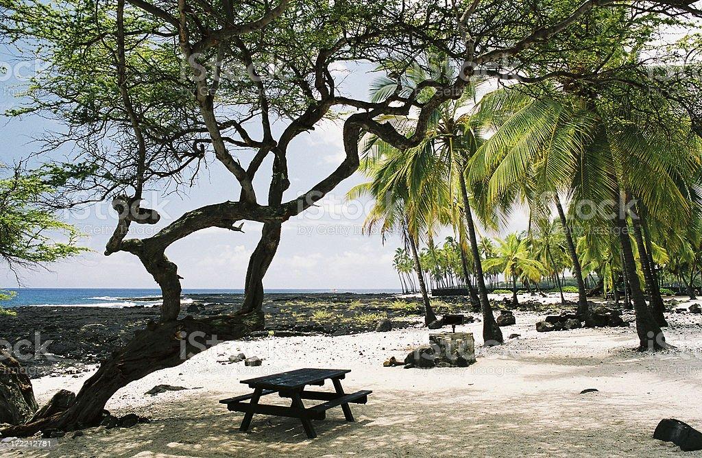 Big Island Hawaii Pacific Ocean  beach picnic bench and area royalty-free stock photo