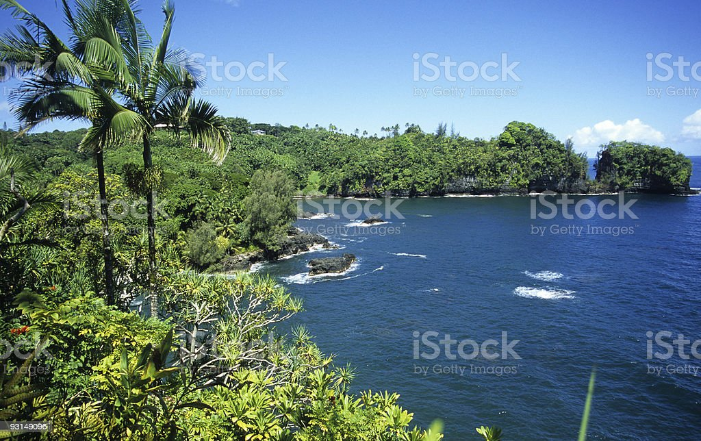 Big Island Rain Forests and Beaches, Hawaii royalty-free stock photo