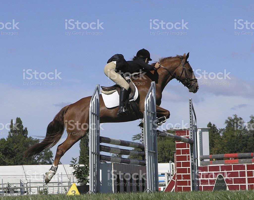 Big Jump royalty-free stock photo