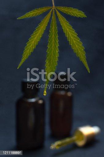 Big marijuana leaf dripping CBD oil make with cannabis on blur black background with CBD bottles. Medical marijuana product.