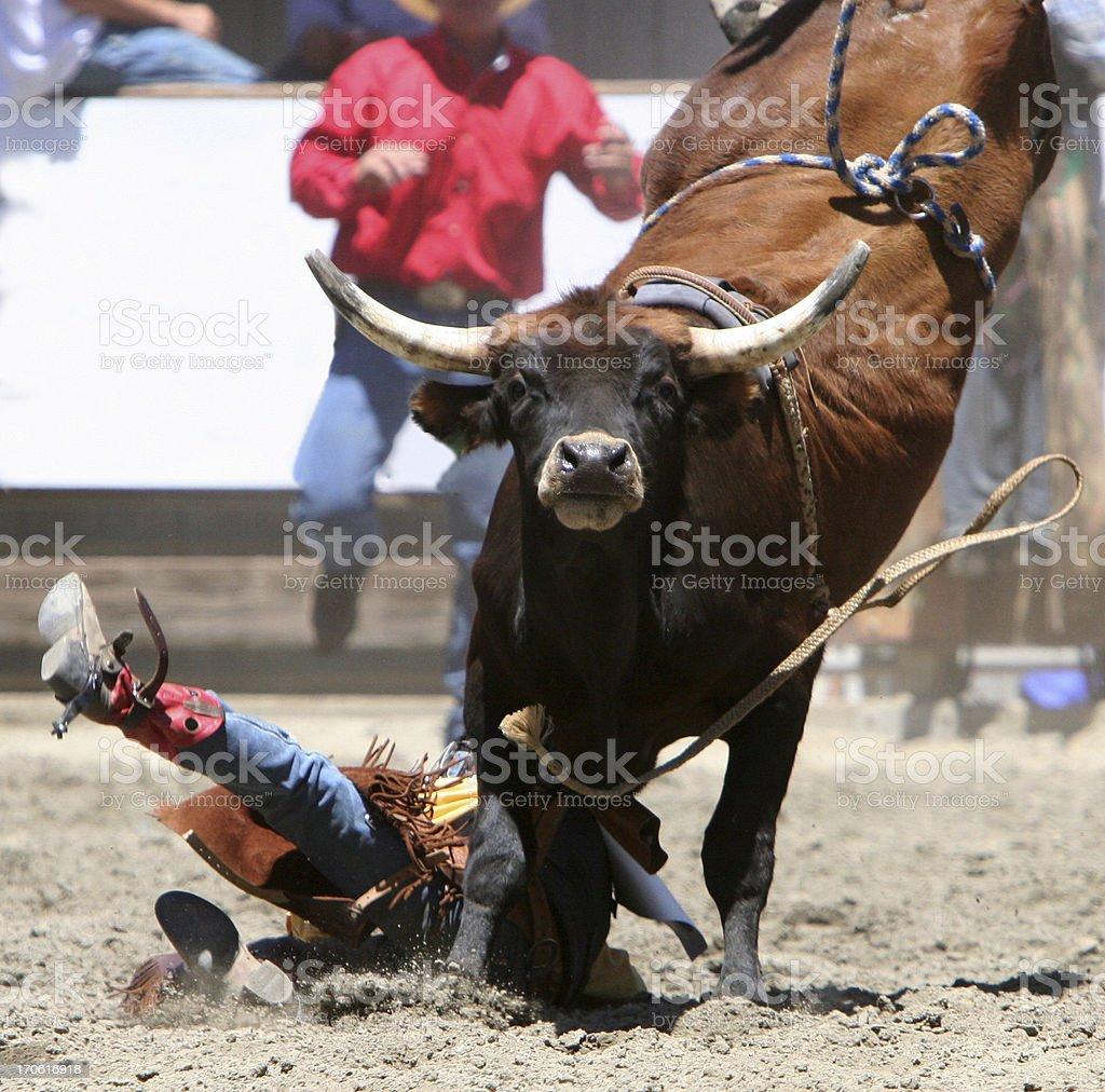 Big Mean Bull royalty-free stock photo