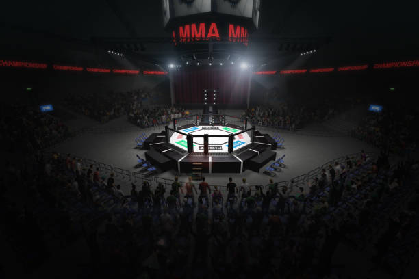 big mma fighting arena with lots of fans 3d rendering stock photo