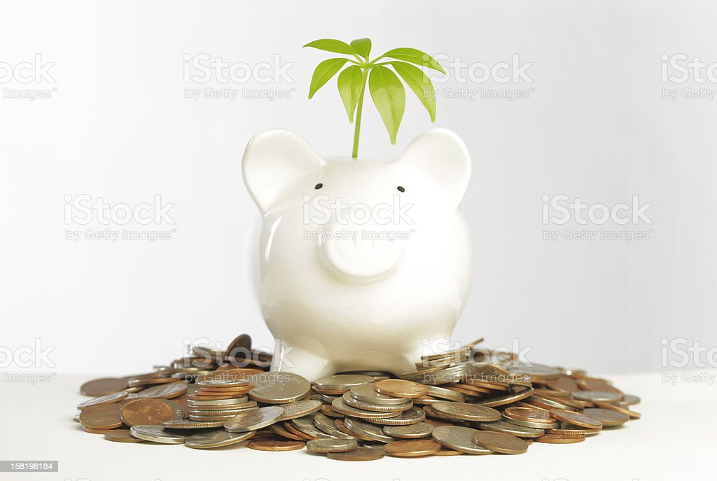 Big Money stock photo