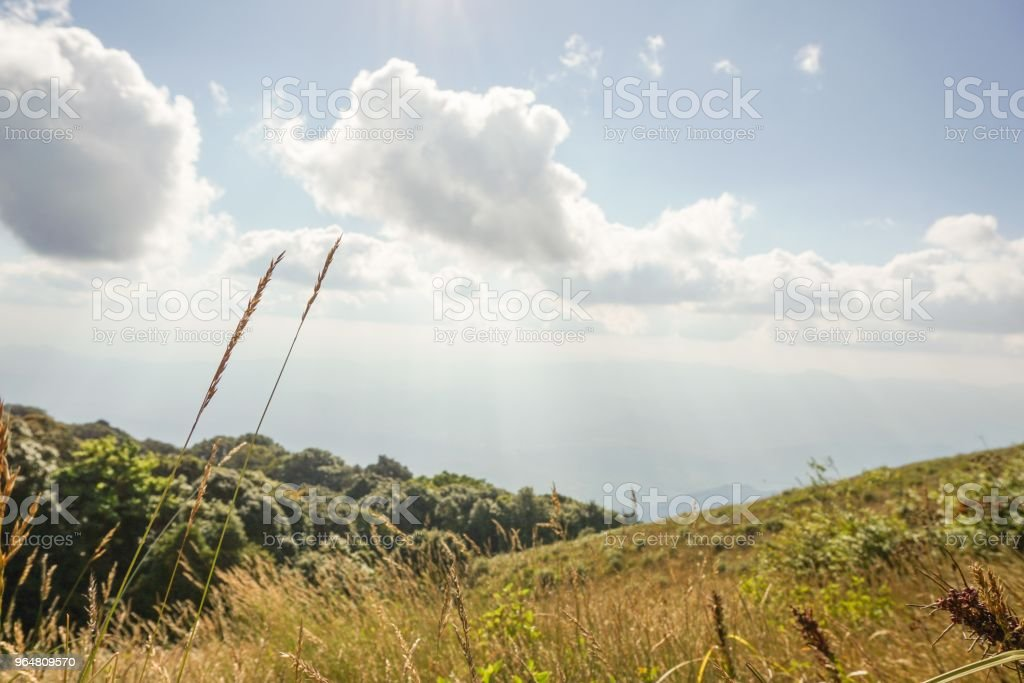big mountain in north Thailand royalty-free stock photo