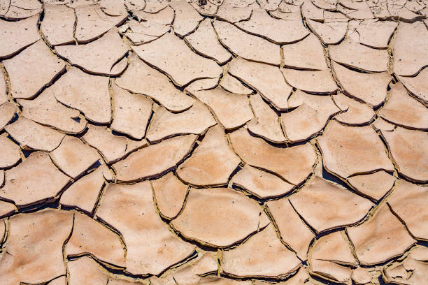 big mud cud cracks and dried mud tiles in the death valley - cud stock pictures, royalty-free photos & images