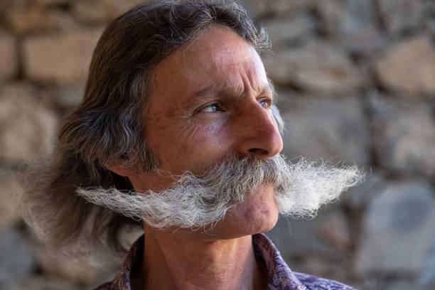 großen schnurrbart mann, eriwan, armenien - riesenschnauzer stock-fotos und bilder