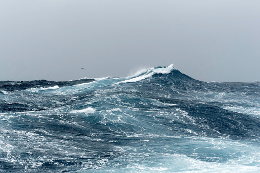 Big Ocean Swells in a Stormy Sea