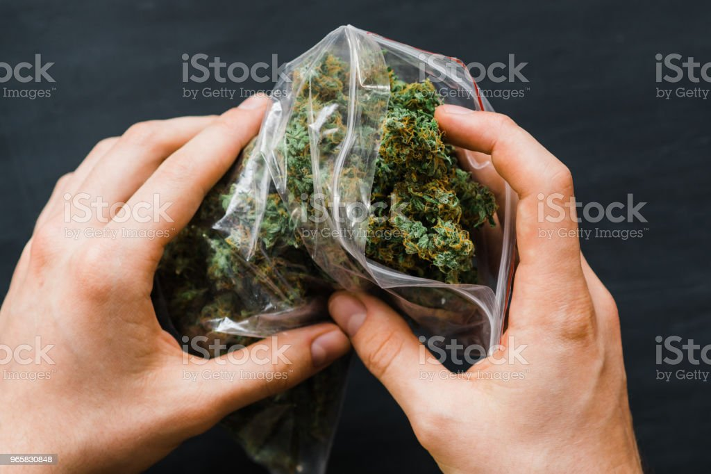 Big Package with weed and fresh buds of cannabis many weed. Copy spase Copy-space joint fresh green buds - Royalty-free Addiction Stock Photo