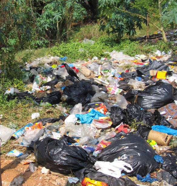 Big pile of garbage in the forest. Black plastic bags with garbage, paper, dirty packaging. Environmental pollution stock photo