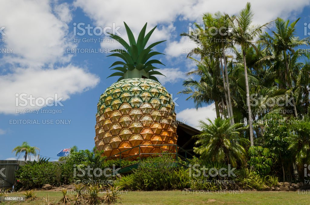 Big Pineapple near Nambour Sunshine Coast Queensland stock photo