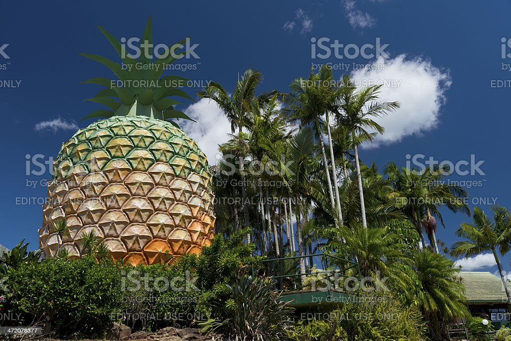 Big Pineapple Sunshine Coast stock photo