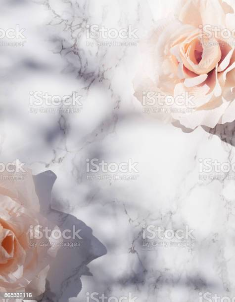 Big pink roses on white marble background with leafy shadows in picture id865332116?b=1&k=6&m=865332116&s=612x612&h=369vuki7eznquz wfgb7216of2fb3kifxrlzdrqsjes=