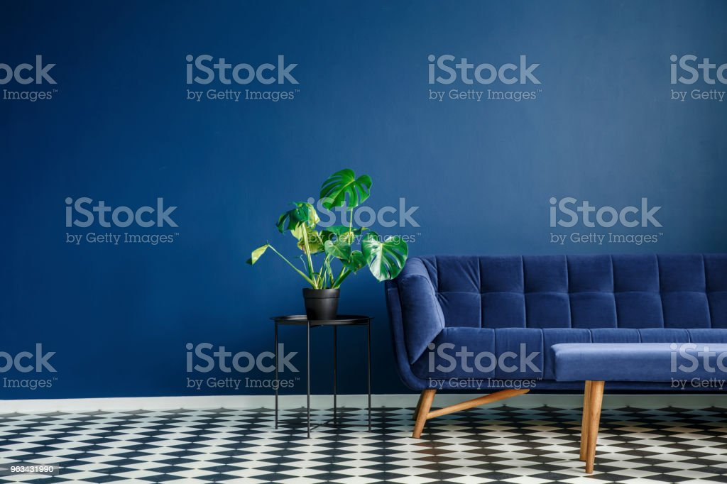 Big plant on a stool next to a comfy couch and checkered tiles set in a living room interior. Place your product - Zbiór zdjęć royalty-free (Bez ludzi)