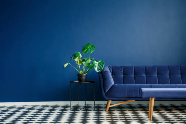 Big plant on a stool next to a comfy couch and checkered tiles set in a living room interior. Place your product - foto stock