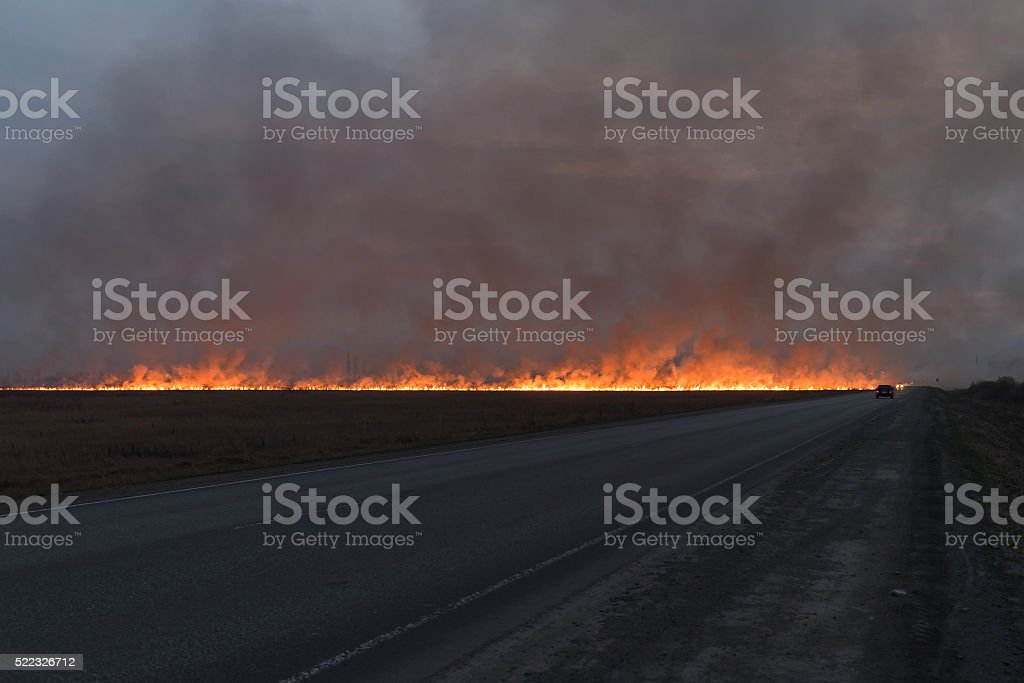 big red fire in the dry grass field stock photo