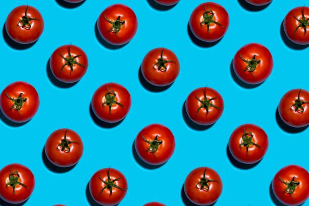 Große rote Tomaten auf symmetrischen blauen Hintergrund – Foto