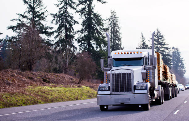 big rig classic powerful semi truck carry lumber wood on two flat bed semi trailers on the straight road with trees background - veicolo terrestre foto e immagini stock