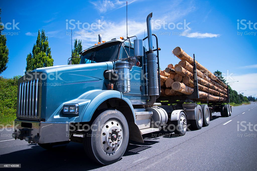 Big rig semi truck carry trees logs on straight road stock photo