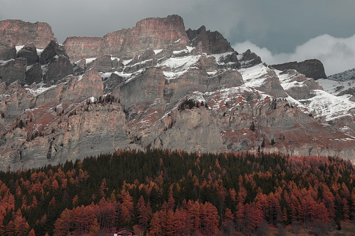 Big Rock and Beautiful trees in Autumn