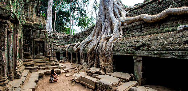 Big Roots from Angkor Inside the Ta Prom Temple stock photo