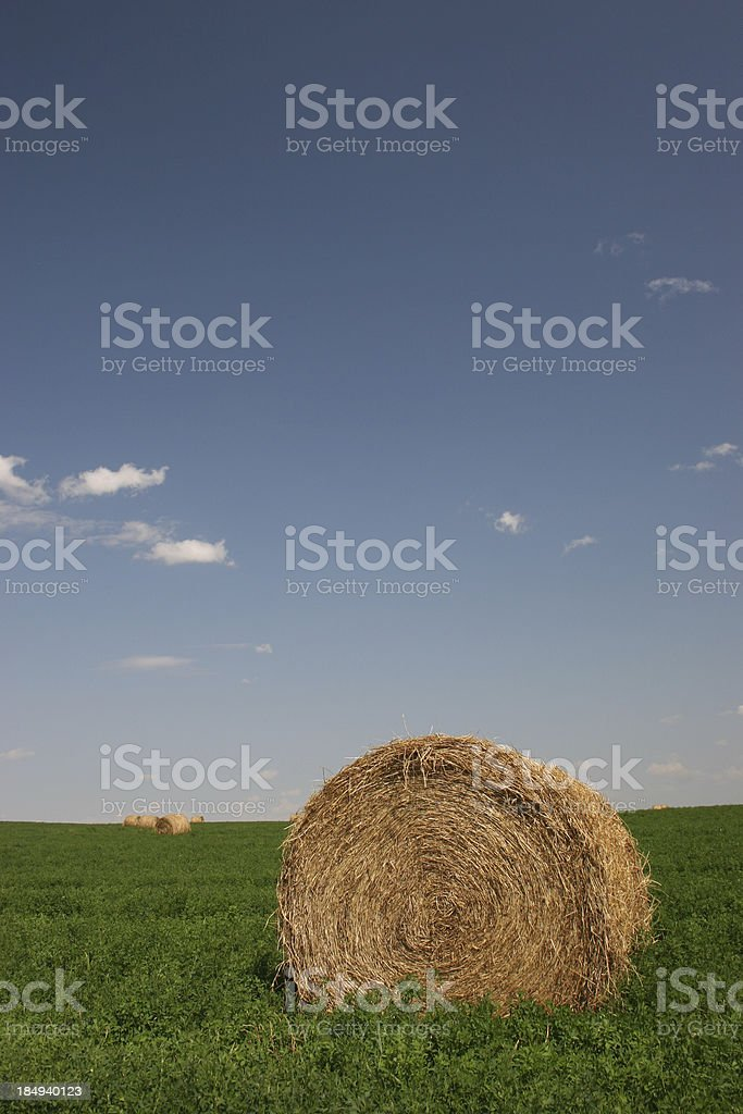 A big round hay bale in a large, green grassy field.  stock photo