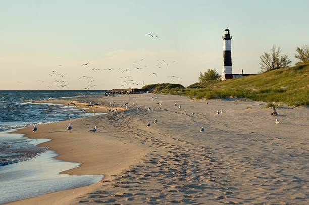 Big Sable Point Lighthouse with Gulls stock photo