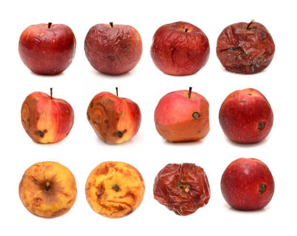 白い背景に分離されて別の腐ったリンゴの大きなセット - 腐敗 ストックフォトと画像