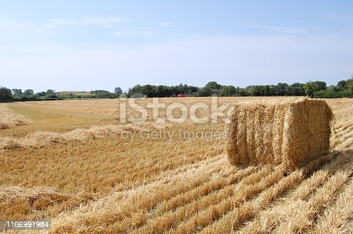 It`s a beautiful summers day and at the end of the field there is a small hill.