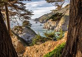 Julia Pfeiffer Burns State Park in Big Sur CA.  A view overlooking the McWay Falls bay.