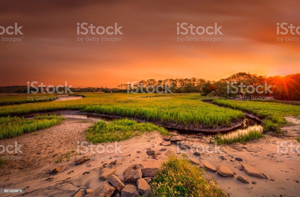 Big Talbot Island stock photo