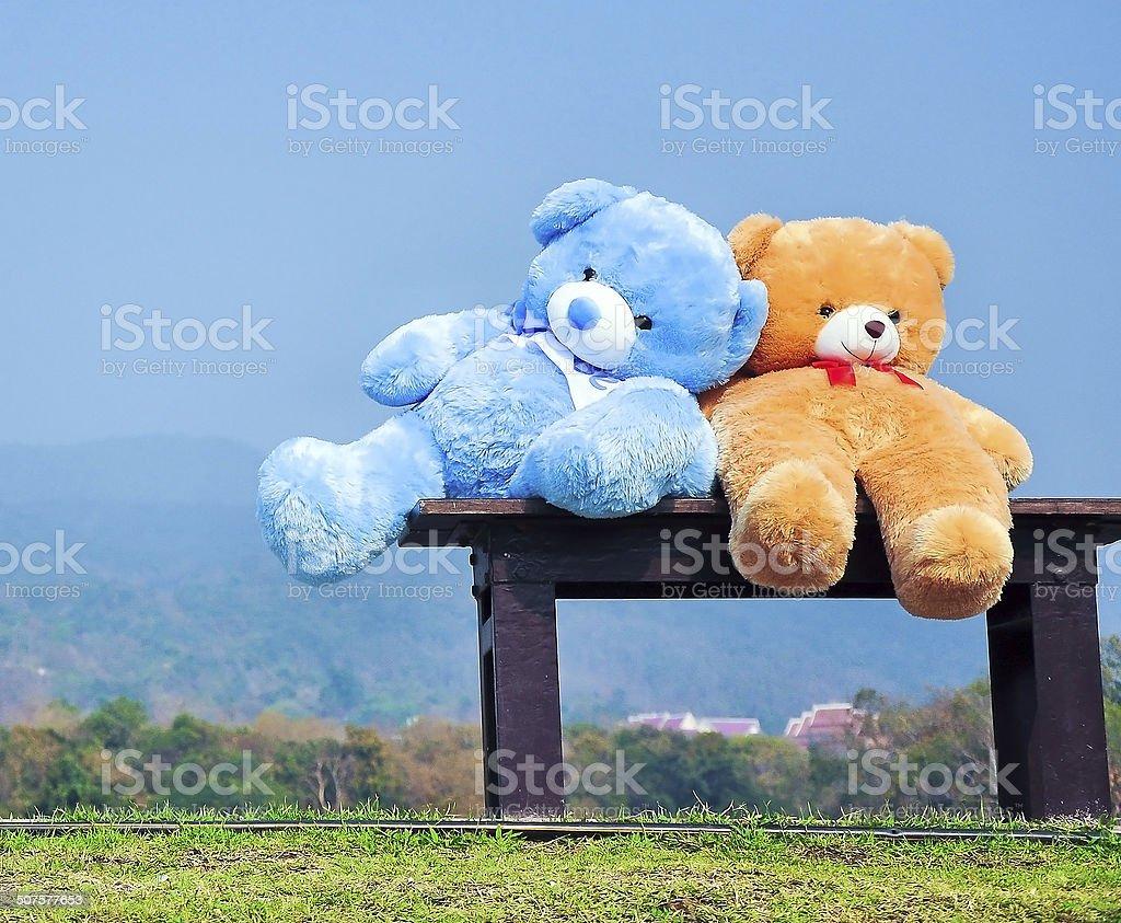 big teddy bears sitting on wood chair blue sky background