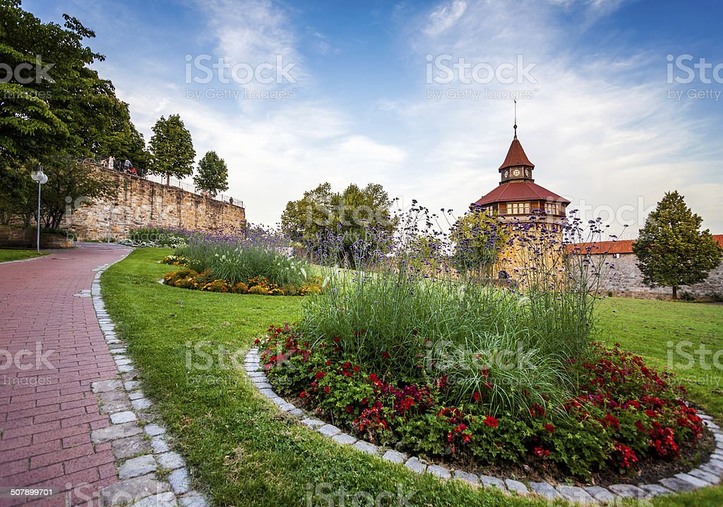 Big Tower behind the flowers. stock photo