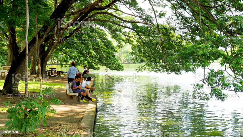 Big tree beside pond with people resting, in Phutthamonthon Buddhist park stock photo