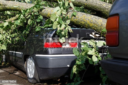 istock Big tree fall down on car during hurricane 639878634