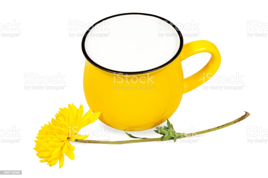 Big vivid yellow cup of milk and beautiful chrysanthemum flower isolated on white background. Concept of healthy and natural dairy products. stock photo