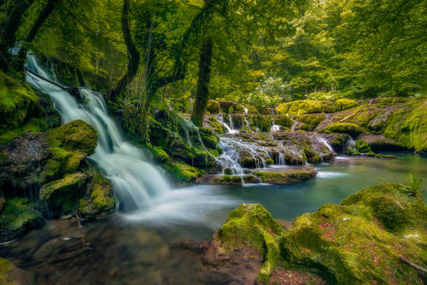 A big waterfall in deep forest in Nera Gorges Cheile Nerei in Romania stock photo
