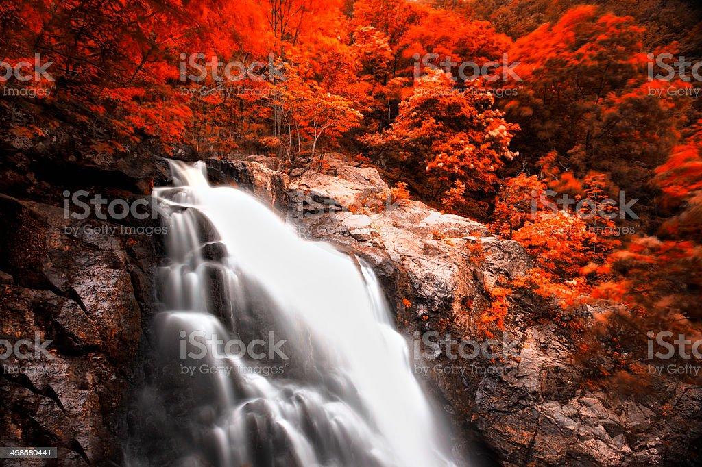 Big waterfall stock photo