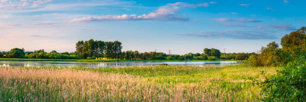 big waters nature reserve panorama - nature reserve stock photos and pictures